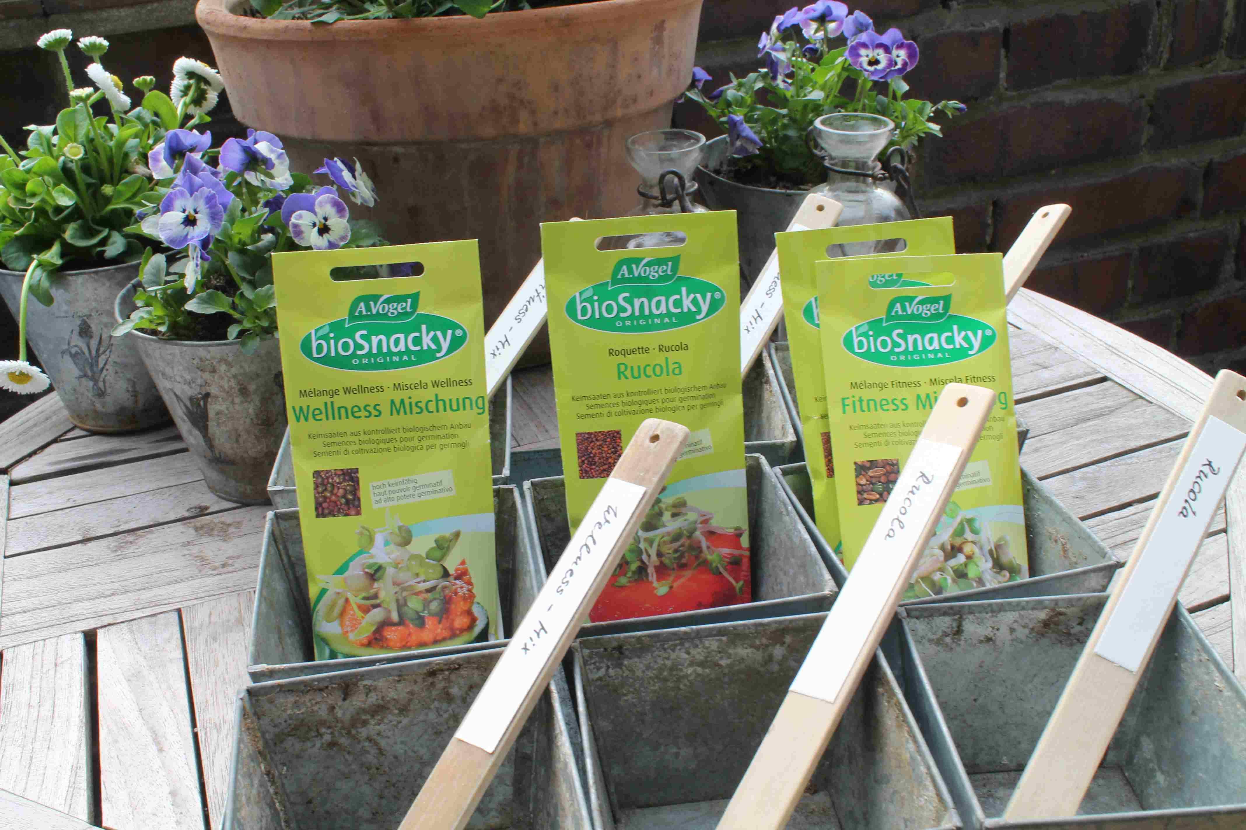 Für die Sprossen benötigt man Töpfe, Samen und Erde