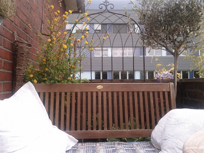clematis und passionsblume am rankgitter 20120429 rebrob. Black Bedroom Furniture Sets. Home Design Ideas
