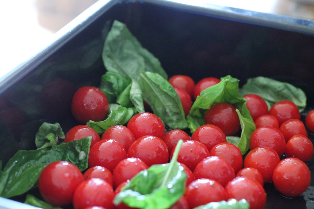 italienische Tomatensuppe - Kirschstrauchtomaten in eine Bratform