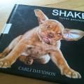 Shake Hunde Geschüttelt Bilder von Carli Davidson