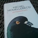 Unterwerfung von Michel Houellbecq